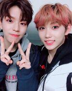 Felix and Seungmin IG Update 181102 (1)