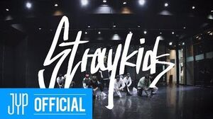 "Stray Kids ""MIROH"" Dance Practice Video"