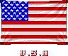 SF-USA-Flag