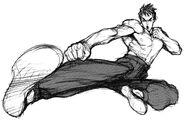 Super Street Fighter II X Art Fei Long 2