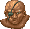 Sagat-SF-Defeat-Icon