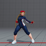 SF5CammyTrack