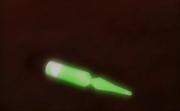 GlowVial