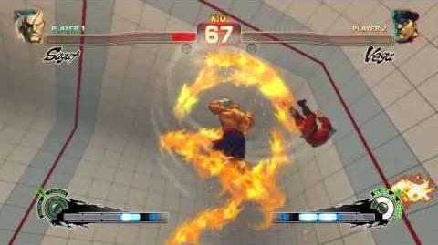 Tiger Destruction Street Fighter Wiki Fandom