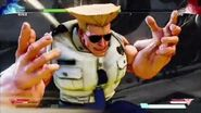 STREET FIGHTER V -Streeet Fighter V - Guile Critical Art Sonic Hurricane