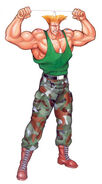 Guile-sf2-pose