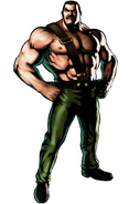 Mike Haggar-UMvsC3