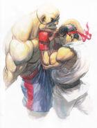 SFIV-Ryu vs Sagat