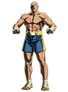 Sagat SFV Encyclopedia