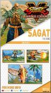 SagatCard