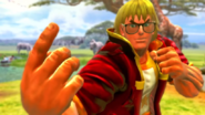 USFIV Ken Summer Costume