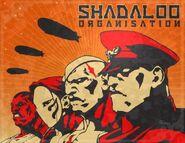 Shadaloo Warriors