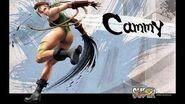 Super Street Fighter IV Cammy White Clip Voice Japanese
