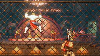 Cage Climb Street Fighter Wiki Fandom