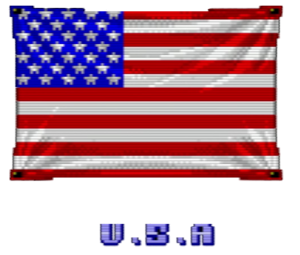U.S. Flag SF1