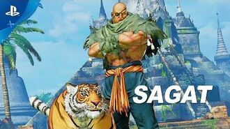 Street Fighter V Arcade Edition – Sagat Gameplay Trailer PS4