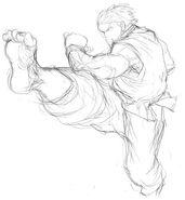 SFIV-Ken kick