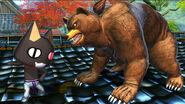 Bear vs cat