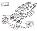 Str2 kraken concept parts