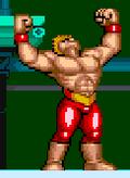 Strobaya fight