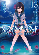 Light Novel Vol 13