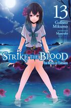 Light Novel Vol 13 EN