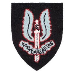 300px-SpecialAirService