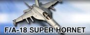 FA-18 Super Hornet (Partner)