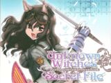Unknown Witches: Secret File