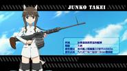 Silver Wings Junko