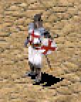 Schwertkämpfer Stronghold Crusader