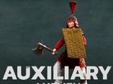 Auxiliary axeman
