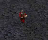 Saxonwarrior