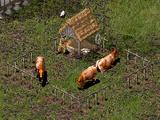 Dairy Farm/Stronghold Crusader, 2, Legends