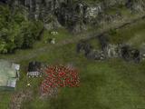 Village in the Marsh
