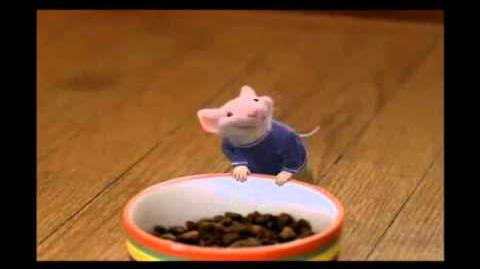 Stuart Little - Wanna be friends?