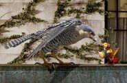 Stuart Little 2 Margalo and Falcon