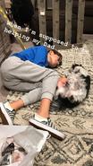 Nicky and Dog