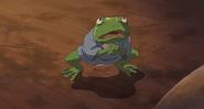 Aogaeru (4)