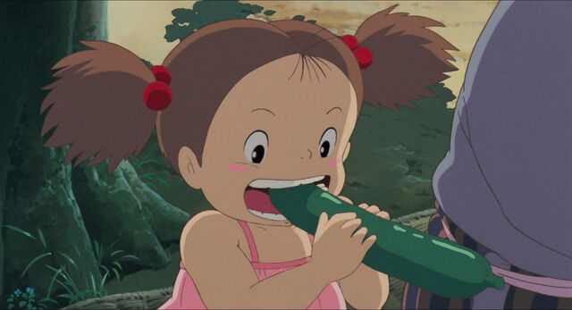 File:Neighbor-totoro-disneyscreencaps com-7383.jpg