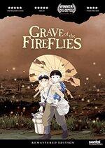 Grave of Fireflies DVD SF