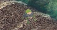 Aogaeru (6)