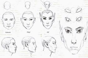 Fizjonomia1