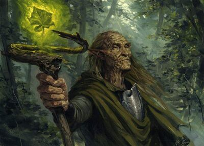 Elven-Druid-800x571