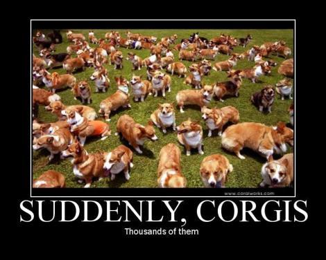Suddenly-corgis