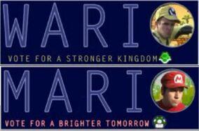 Mario and Wario Campaign