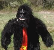 Donkey Kong - Season One