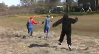 Stupid Mario Brothers Donkey Kong Chasing Mario and Luigi