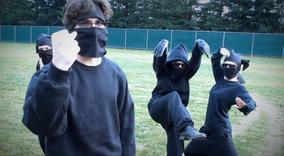 Top ninjas