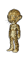 WildcatF
